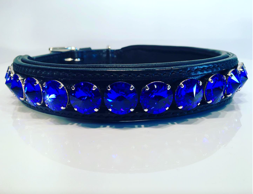 Delight Dog Collar #3