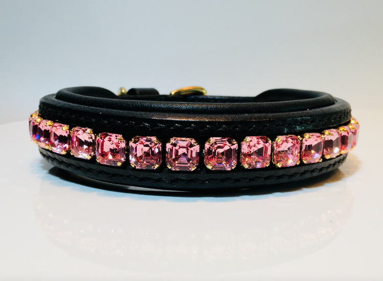 Imperial Dog Collar #1