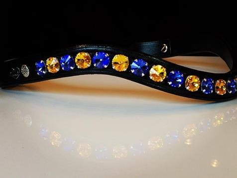Delight Browband #4