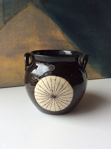 Aster pot 2013 M