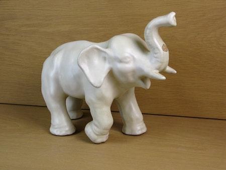 elephant 7  westberg
