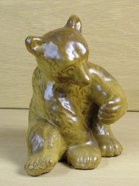 brownish bear 58