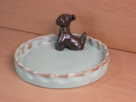 brown dog in green bowl 12