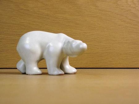 White polar bear 72