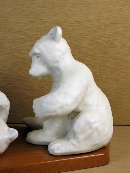 white bears 58&60 playing