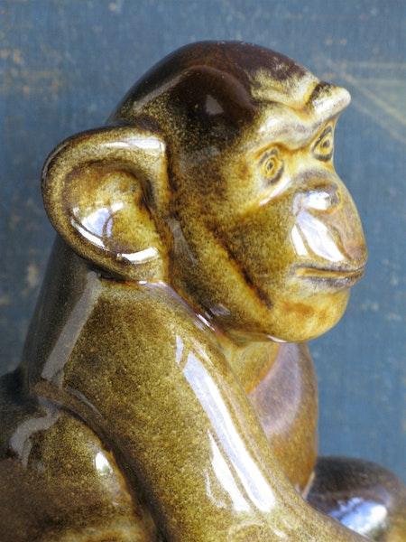 figure 115 monkey