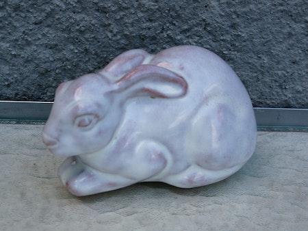 big white rabbit 106