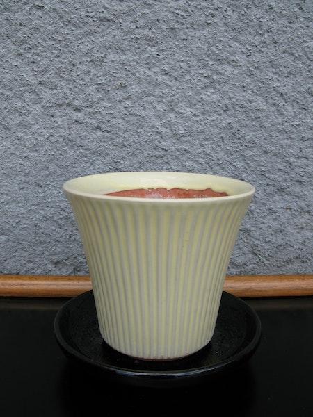 yellow freja flowerpot nr 2