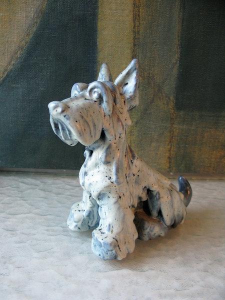 blueish dog 81