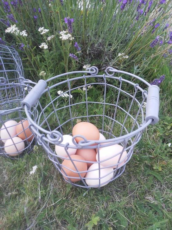 Nätkorg grå äggkorg 3 olika