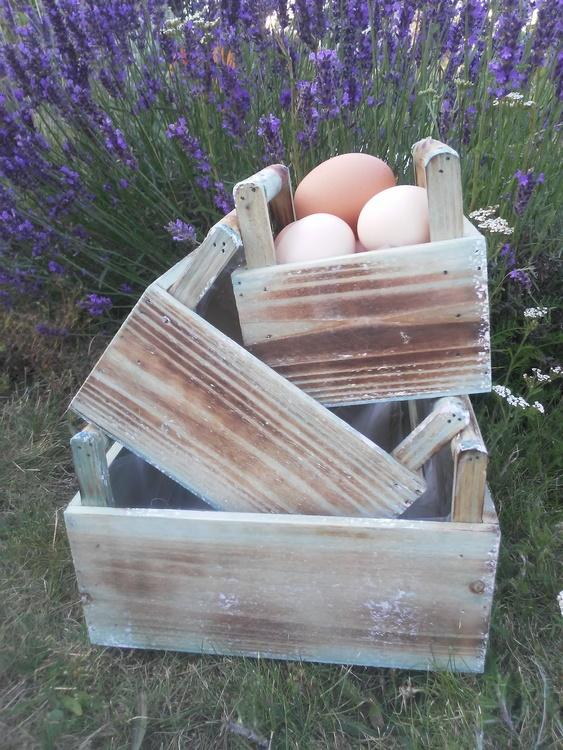 Lådor trä äggkorg 3 olika
