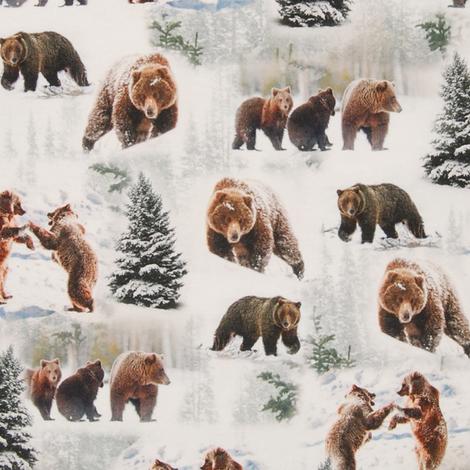 Vinterbjörnar