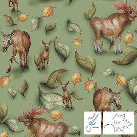 Moose - COLLEGE
