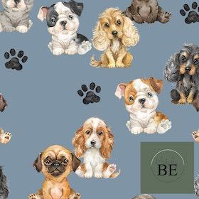 Hundar Duvblå