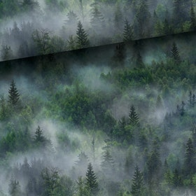 Skogslandskap - COLLEGE