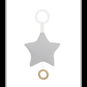 Speldosa Stjärna Grå