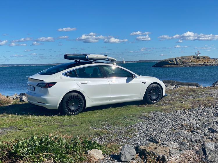 Model 3 takräcke