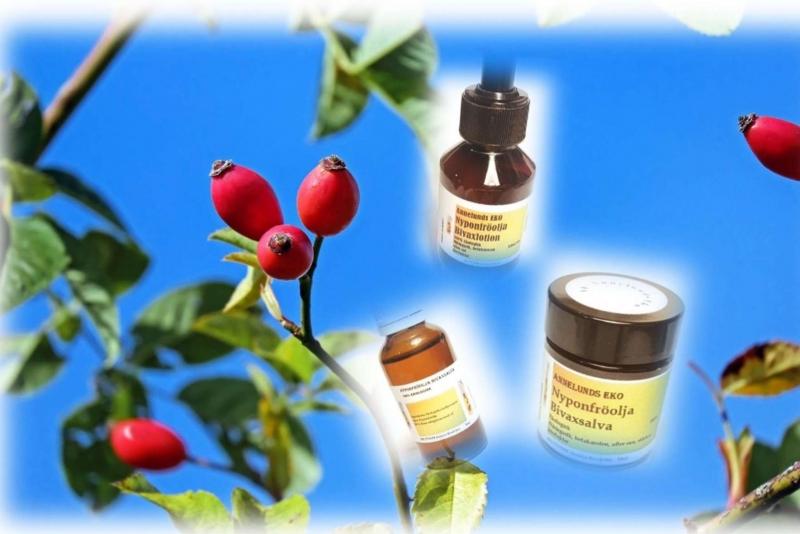 Nyponfröoljans egenskaper för din hud