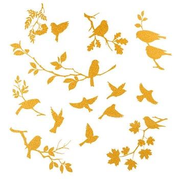 Dekal Fåglar 1