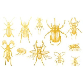Dekal Insekter 1
