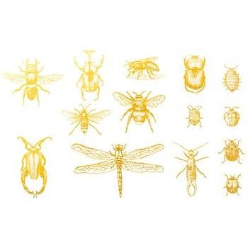 Dekal Insekter 2