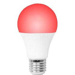 AMPLICALL 6 - Smart lampa