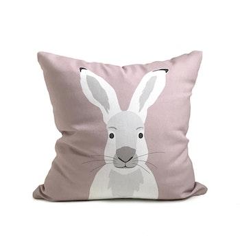 Kudde - Hare