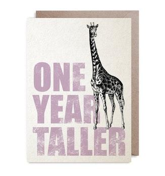 Kort - One Year Taller