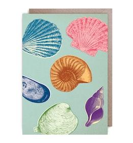 Kort - Bright Shells