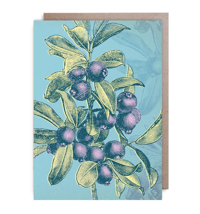 Kort - Bright Blueberry