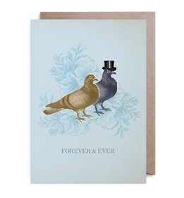 Kort Doves