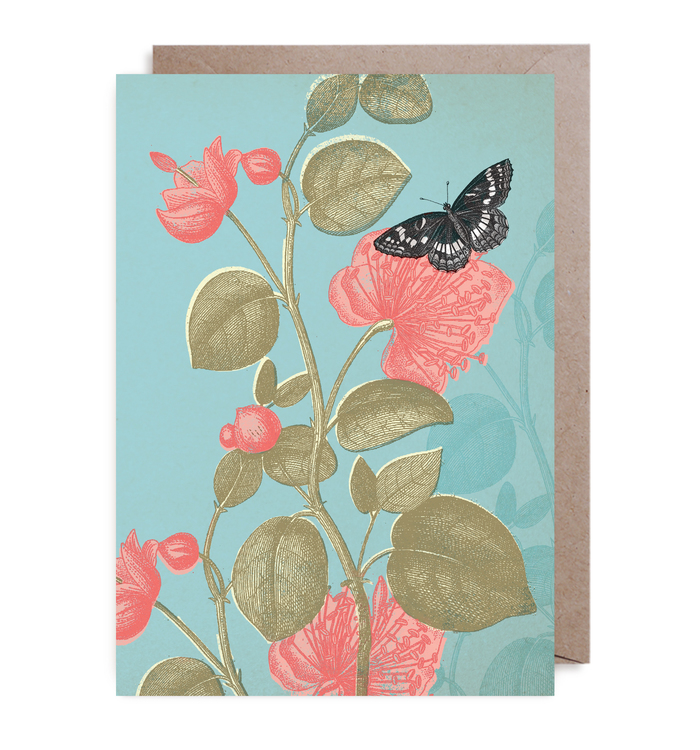 Kort - Butterfly