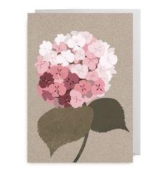 Kort - Hortensia Pink