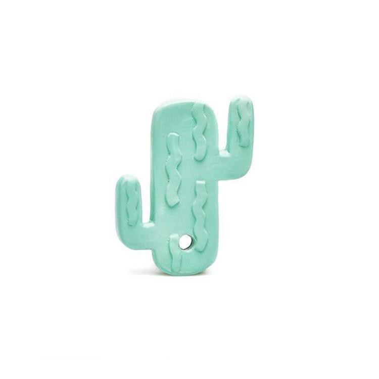 Bitleksak kaktus