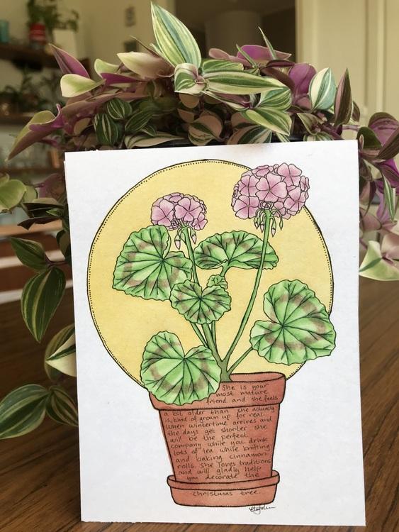 Växtvän Pelargonia