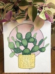 Växtvän Kaktus
