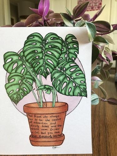 Växtvän Monstera