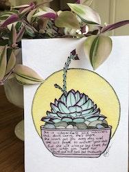 Växtvän Succulent