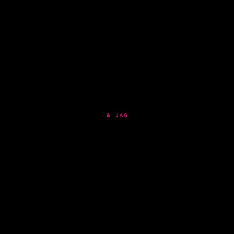 55 (NYA) förebilder & jag – tygpåse