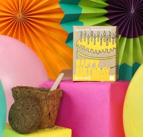 Födelsedag - Odla Dina Egna Blommor