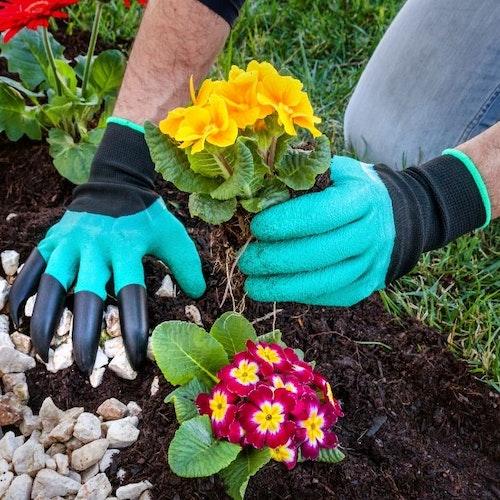 Trädgårdshandskar Med Klor