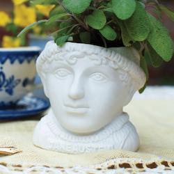Kruka Jane Austen