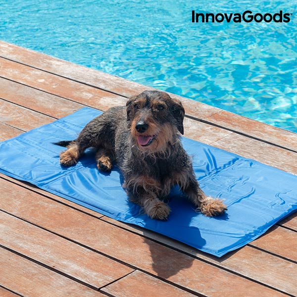 innovagoods Kylmatta för Husdjur