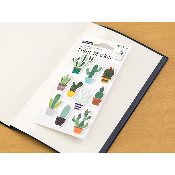 Midori Point Marker Cactus