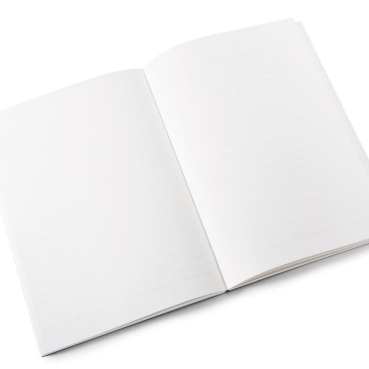 Apica Premium CD Notebook Linjerad