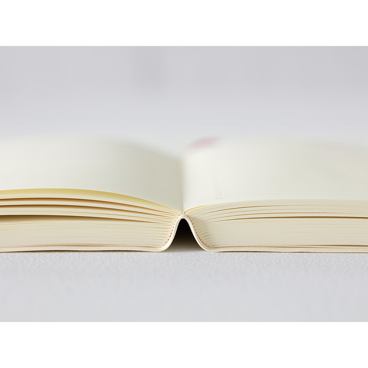 Midori MD Notebook 2022 Diary A5 1Day 1Page