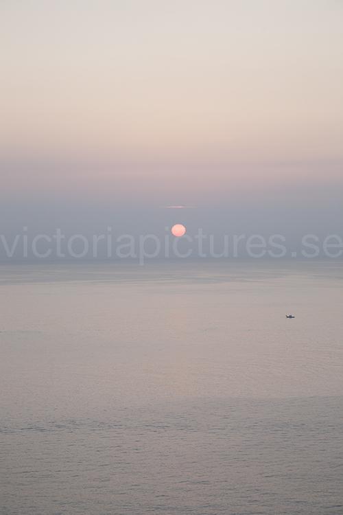 Pink sun 2