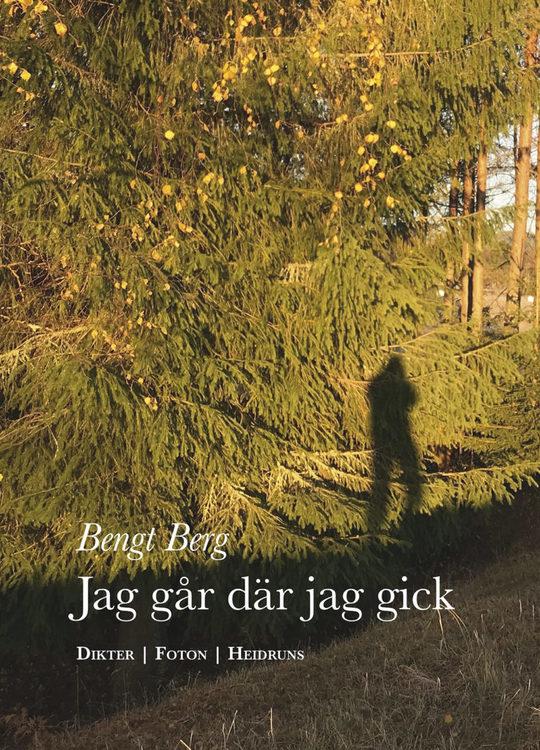 Jag går där jag gick/Bengt Berg