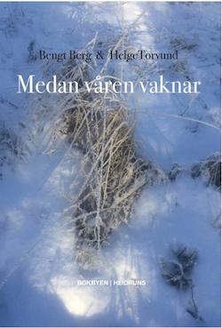 Medan våren vaknar/Bengt Berg & Helge Torvund