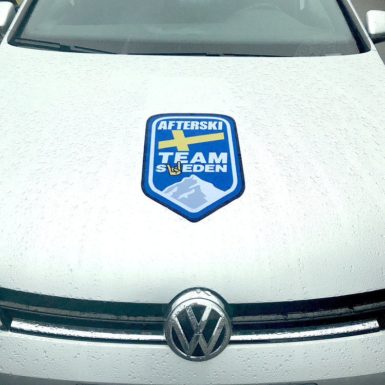 Magnetdekal Stor Team Logo
